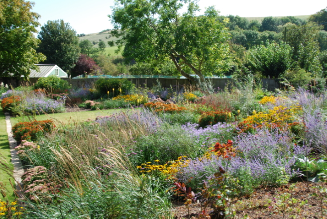 Naturalistic planting soon after planting – Sussex